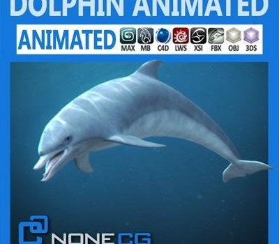 Animated-Bottlenose-Dolphin.jpg