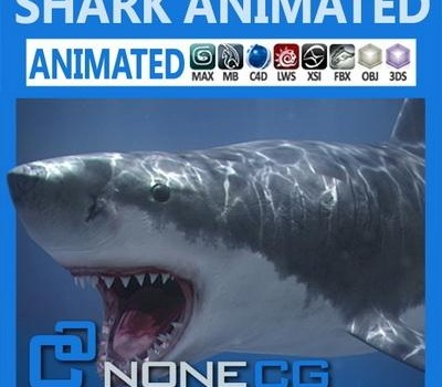 Animated-Shark.jpg