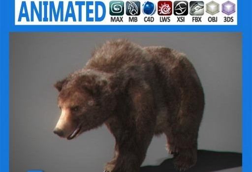 Grizzly-Bear-Animated.jpg