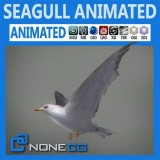 Animated-Seagull.jpg