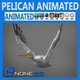 Animated-Pelican.jpg